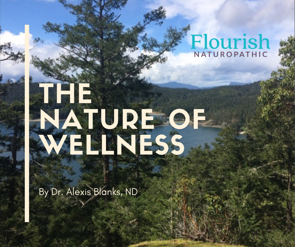An article about wellness and nature from a naturopathic doctor.
