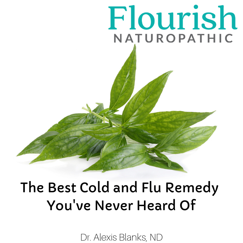 The Best Cold and Flu Remedy You've Never Heard Of